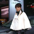 Jaguar_12