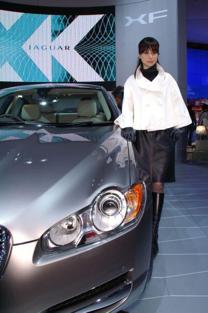 Jaguar_11