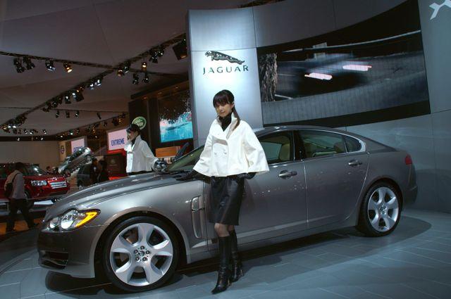 Jaguar_17