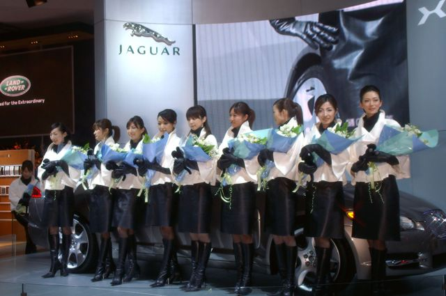 Jaguar_30